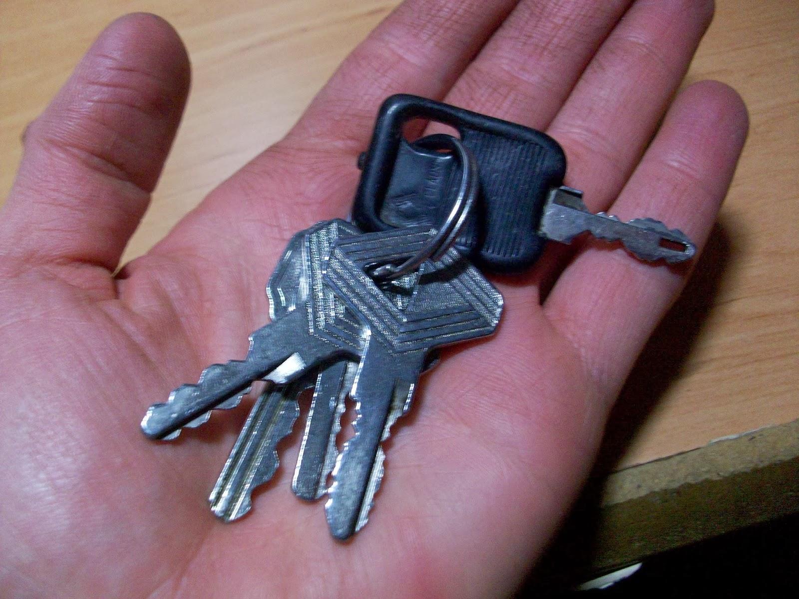 ¿Sabes que debes tener en cuenta para renovar el carnet de conducir?