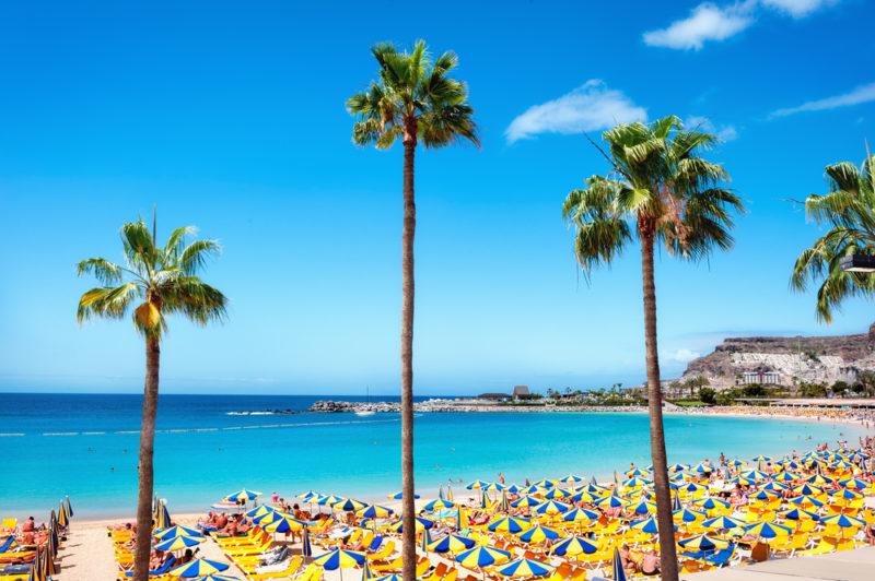 Oferta. 5 días de vacaciones en las Canarias