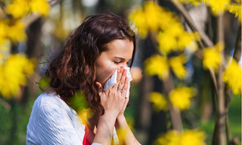 Alergia a la primavera: cómo refugiarse